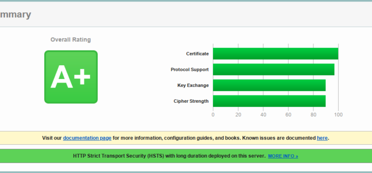 TLS Configuration for nginx to Get A+ in HTBridge and SSL Labs Tests